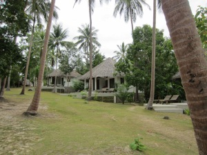 The Jungle Club, Koh Samui